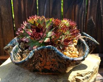 Gorgeous succulent art pottery ceramic wavy textured stoneware planter handformed original