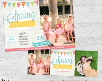 Spring Mini Session Template, Spring Photography Marketing Board Template, Photography Marketing, Spring, Photoshop, Photographer, 06-003