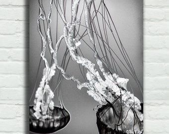 """Black and White Jellyfish Canvas Wrap - two jellyfish art 16x24 canvas underwater sea life ocean 24x36 canvas large wall art 8x12 - """"Unity"""""""