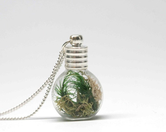 Moss terrarium pendant with silver chain - tiny moss terrarium pendant in glass bottle with necklace -  wild grace jewelry