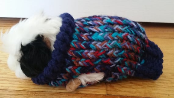 Guinea Pig Sweater Knitting Pattern : Hand Made Double Knit Guinea Pig Sweater in Winter Blue