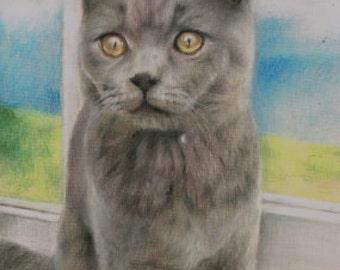 "GREY CAT Pastel Print 5"" x 7"""