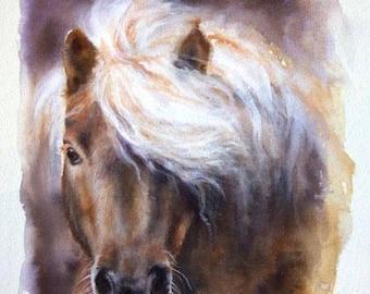 In Miniature (Shetland Pony)