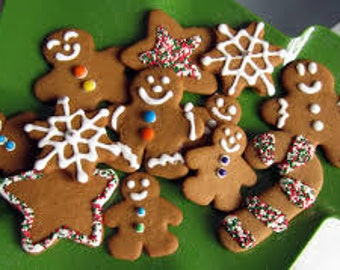 Gingerbread Premium Fragrance Oil  Available In Several Sizes