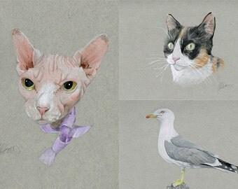Coloured pencil animal portrait