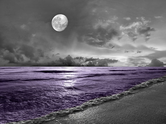 Black White Purple Wall Art Photoraphy Ocean By