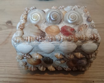 Small vintage shell box