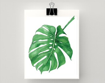 Philodendron botanical print from original watercolour artwork