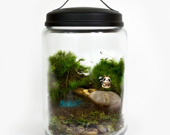 Moss Terrarium // Sneaky Raccoon