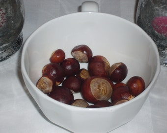 Buckeye Nut Conker Horse Chestnut, hoodoo, Graveyard Cemetery Find, Nature find, curio, curiosity, English tree.