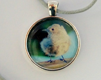 Bird necklace - bird - black Redstart