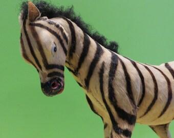 Zebra Taxidermy Etsy