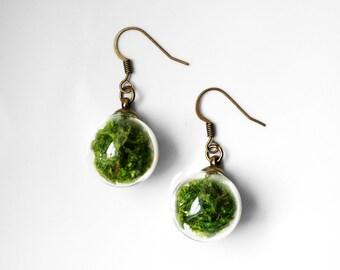 Glass Globe Moss Earrings
