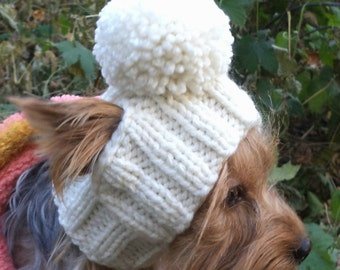 Hat Dog PATTERN pet dog pattern  Dog Hat Clothes Pet Hats Small Dog hat puppy hat knit dog  hat puppy  hat yorkie clothes Yorkie hat