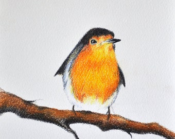 Original Drawing, Colored Pencil Robin, Bird Illustration 5.5x8 inch
