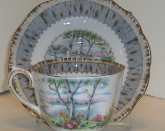 Royal Albert Sliver Birch Cup and Saucer Bone China Made in England  Free Standard Shipping in the U.S.