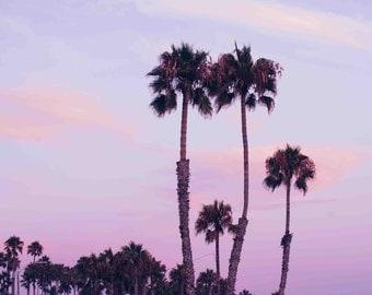 Sunset Ocean Palm Trees Photography - Minimalist Coastal Pastel Pink Pastel Purple Boho Colorful Wall Art Decor Print Canvas