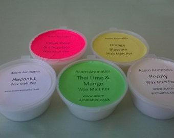 Soy Wax Melt Pots in 20 Fabulous Fragrances