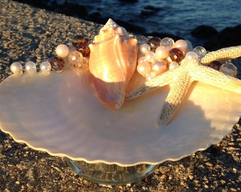 Beach Decor - Scallop Shell Candy Dish (CD008)