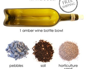 DIY Amber Wine Bottle Terrarium Kit