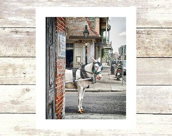 LAFITTE'S MULE - New Orleans Art -Lafitte's Blacksmith Shop- Fine Art Photograph -Limited Edition of 250
