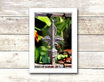 Nola Greeting Cards, Fence FDL, New Orleans, Handmade, Iron Fences, Suitable For Framing, Fine Art Cards