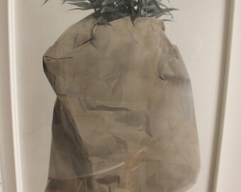 Russell Drisch Palm Series Mid Century Modern Print 16/23 Signed Still Life