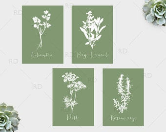 Herbs Kitchen Art - Four 5x7 Herb PRINTABLES / Bay Laurel, Cilantro, Dill and Rosemary Herb Printable Wall Art / Herb Prints / Kitchen Herbs