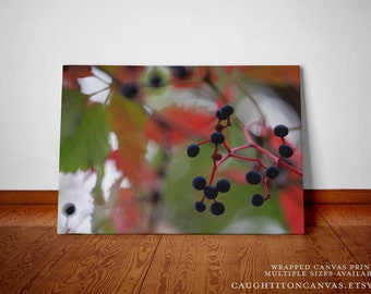 Fall oak maple trees autumn blue berry wall art photograph nature home decor seasonal green red orange abstract caught it on canvas print