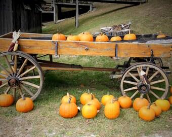 Fall Pumpkin Fine Art Photography, Wagon, Autumn