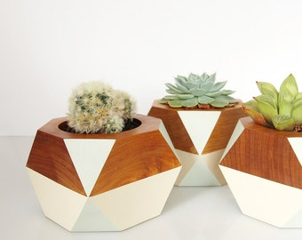Geometric Wooden Pot — Pale Green