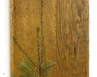 Spruce and Mountain Bluebird