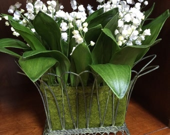 Floral Arrangement - Lillies of the Valley