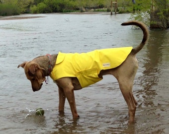 Dog Raincoat (Standard Sizes)