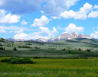 Rolling Hills of Yellowstone National Park // Landscape Photograph // Yellowstone Picture
