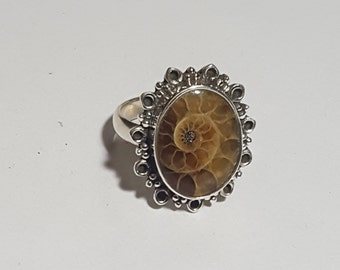 Natural Ammonite Shell ( Oval 16 x 12 mm ) Cabochon in handmade Solid 925 Silver Ring ANY SIZE AVAILABLE