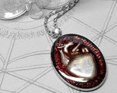 Plum Anatomical Heart Silver Oval