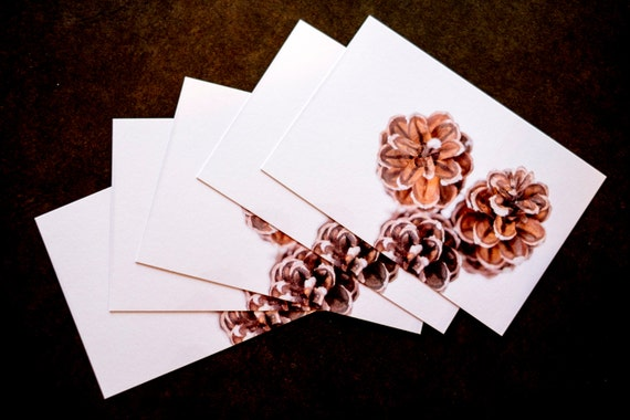fall postcard / winter postcard / pinecone