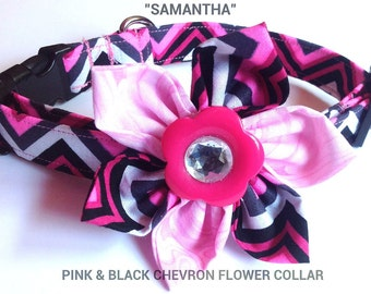 Pink Chevron Flower Collar for Girl Dog or Cat