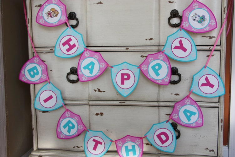 Skye Amp Everest Themed Happy Birthday By Addsomecharmboutique