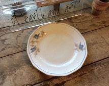 Vintage Bluebird Plate, Salem China, Vintage Birds, Bird Graphics, Bluebird China, Wall Plate