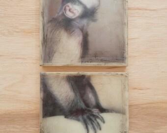 Monkey Art 2 pieces 8x8