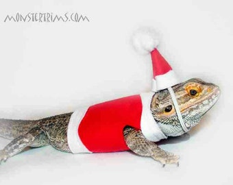 christmas costume, Bearded dragon clothes
