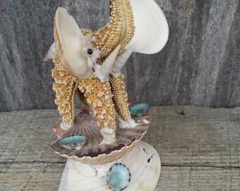 seashell elephant box made from a starfish