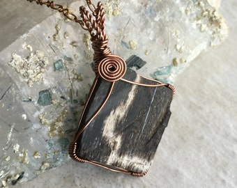 Petrified Wood Copper Wire Wrapped Pendant Necklace