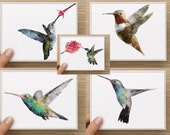 Note card set. Watercolor hummingbirds.  Assorted box of 10. Personally designed.