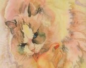 Ragdoll Cat Licking Foot Watercolor Print. Cat painting. Watercolor cat. Cat wall art. Cat picture. Feet painting. Watercolor animal.