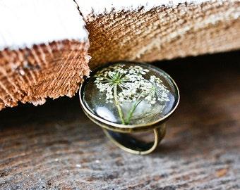 Real white flowers resin ring