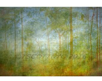 royalty free, background, digital download,stock photo,surreal tropical landscape digital download, nature photography, backdrop,