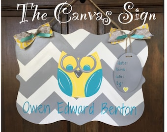 Owl Chevron Hand Painted Wooden Birth Announcement name sign for baby
